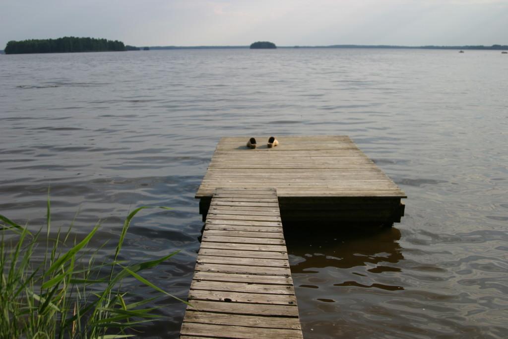 zdjęcie kładka nad jeziorem